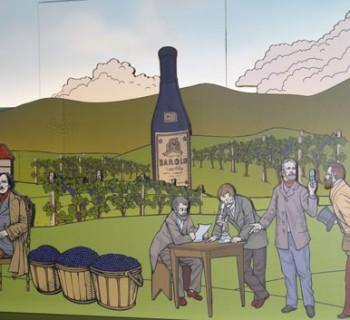 Le terre del vino Barolo
