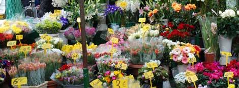 rome-campo-de-fiori